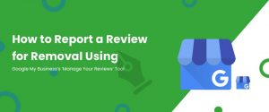Report Review